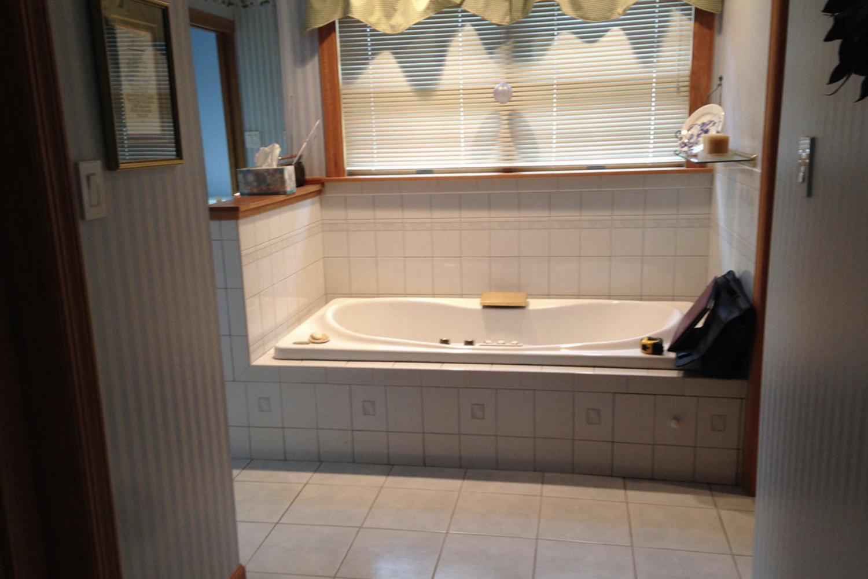 Cathy H Park Ridge Master Bath Before 1