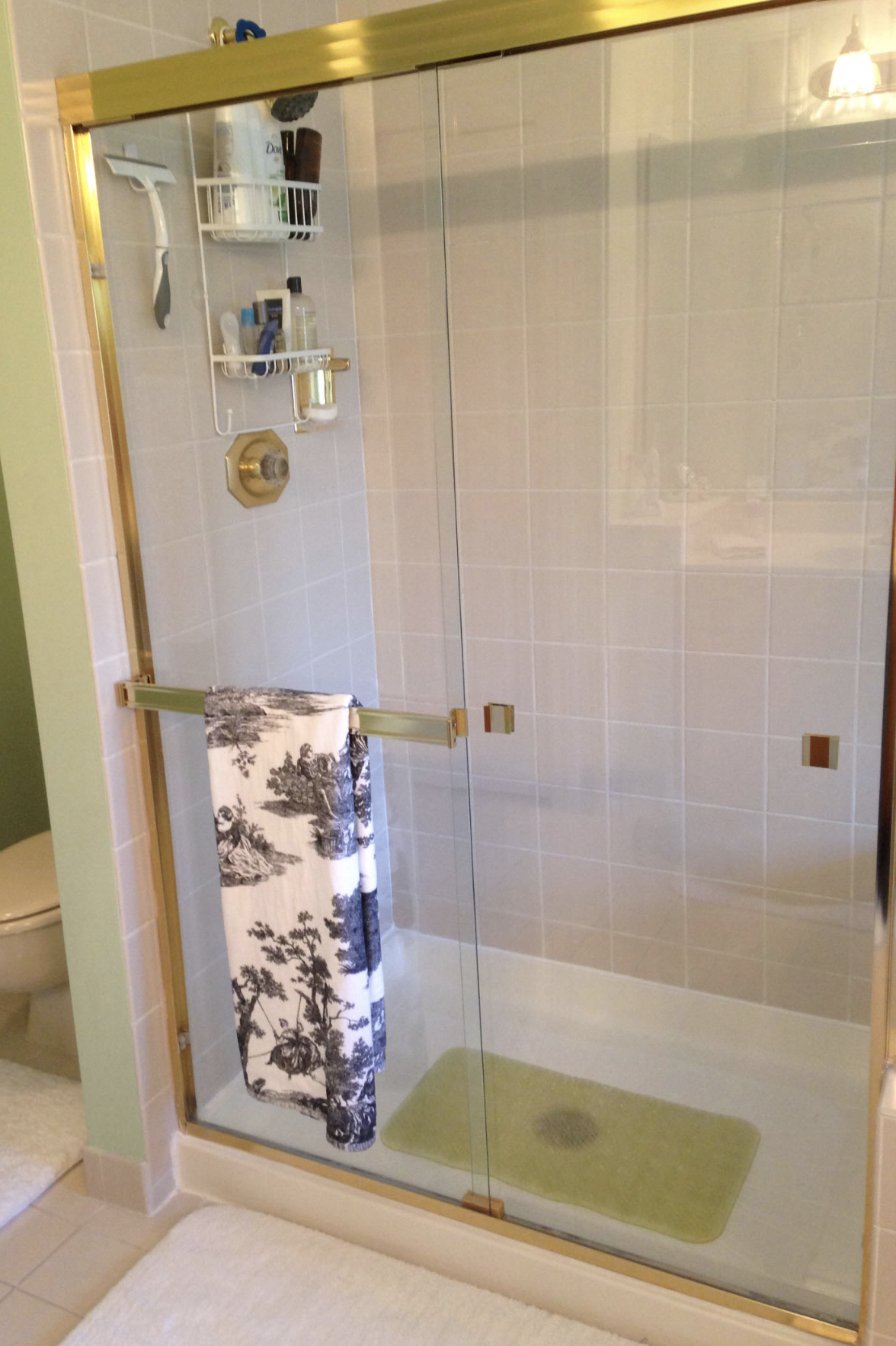 Laura H Glenview Master Bath Before 4